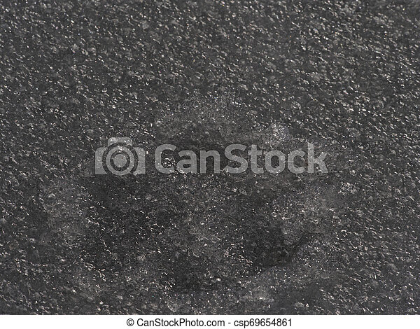 Big dog footprint. Paw print of dog or wolf in icy cover. - csp69654861