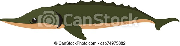 Big green fish, illustration, vector on white background. - csp74975882