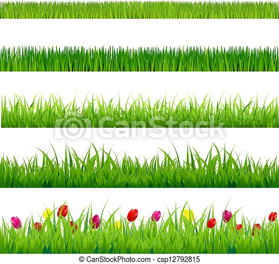 Big Green Grass And Flowers Set - csp12792815
