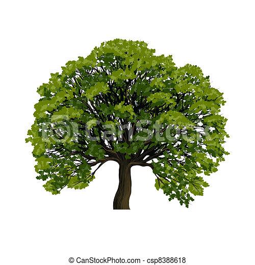 Big green tree vector symbol - csp8388618