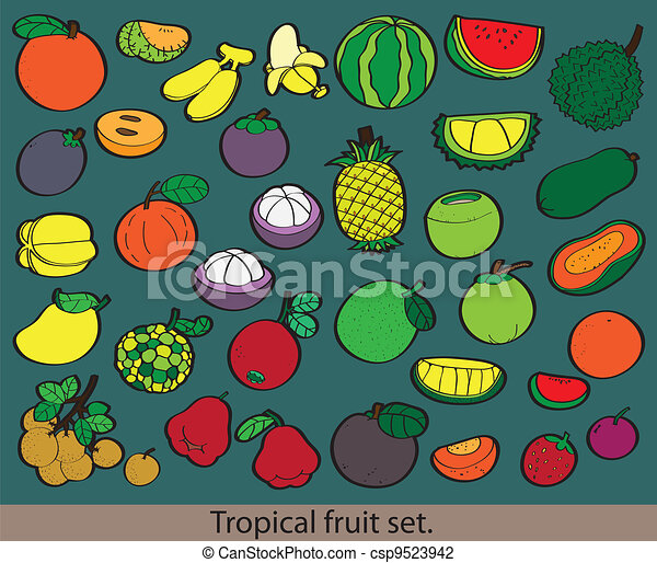 Big group of different fresh fruit. - csp9523942