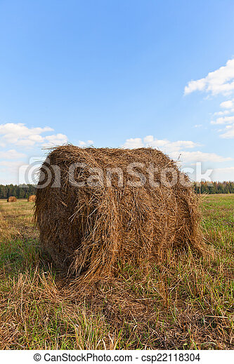 Big hay roll on mowed field - csp22118304