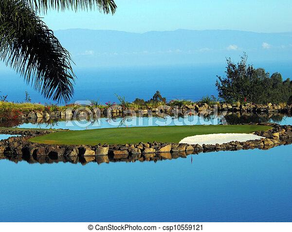 Big Island Golfing - csp10559121
