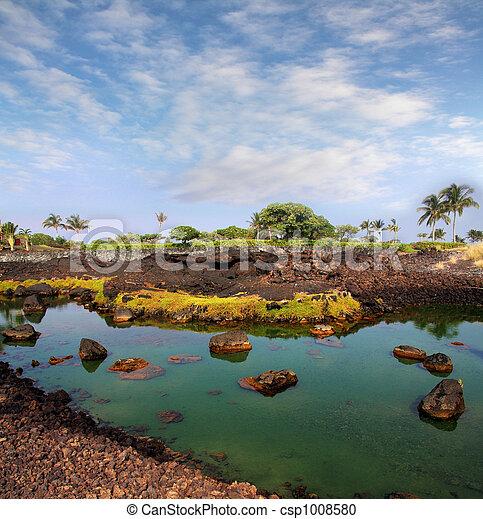 Big Island, Hawaii - csp1008580