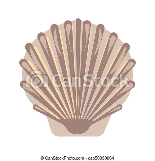 Big sea shell with uneven surface isolated illustration - csp50030064
