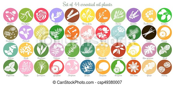 Big set of 44 flat essential oil labels. White Silhouettes - csp49380007