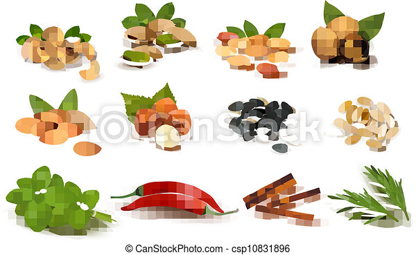 Big set of ripe nuts and seeds and spices  Vector  - csp10831896