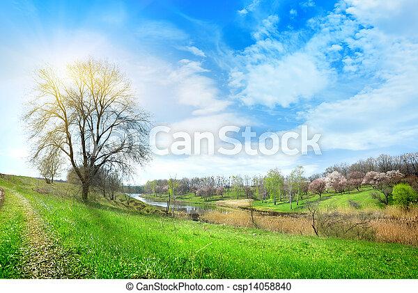 Big tree and lake - csp14058840