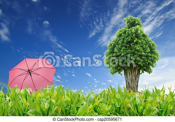 Big Tree And Umbrella Stand In Grass Field With Blue Sky Background