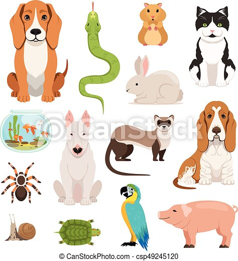 Big vector set of different domestic animals. Cats, dogs, hamster and other pets in cartoon style - csp49245120