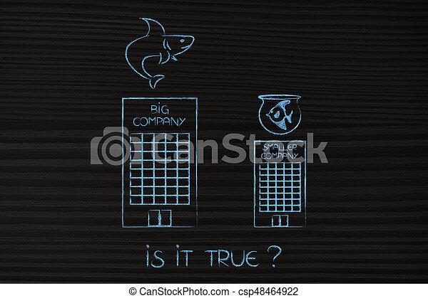 big versus small company with shark and goldfish metaphor - csp48464922