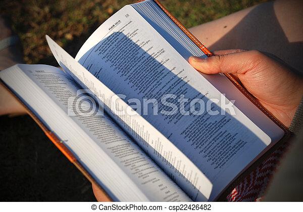 bijbel, het wegknippen, pagina's - csp22426482