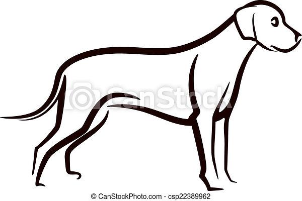 bild, labrador, hintergrund, vektor, hund, weißes - csp22389962