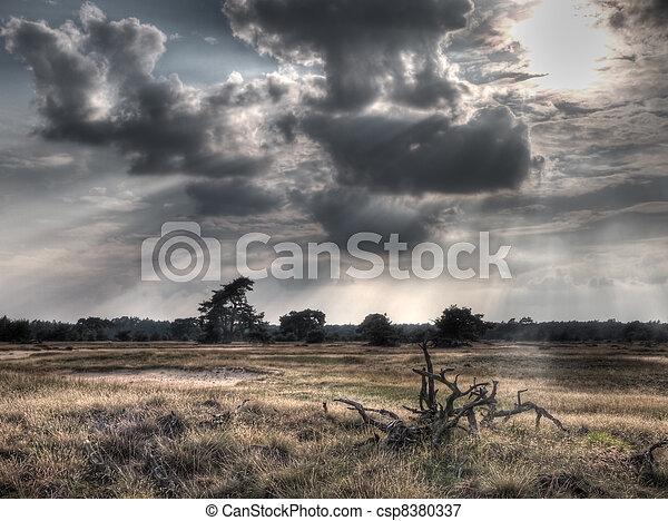 bild, reserve, hdr, natur - csp8380337