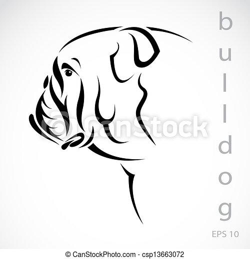 bild, vektor, (bulldog), hund - csp13663072