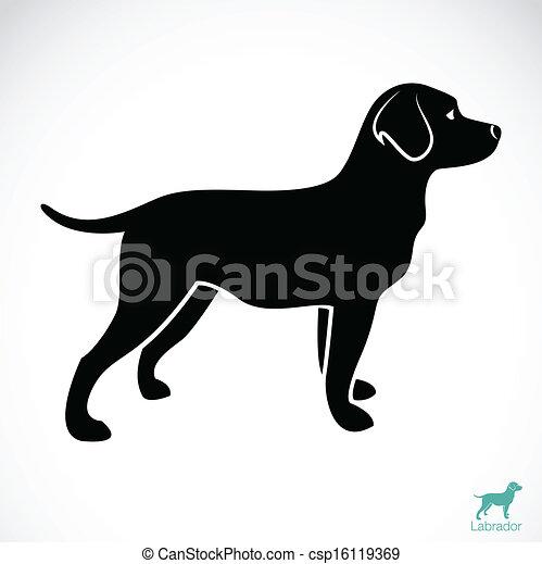 Vector-Bild eines Hundelabradors - csp16119369
