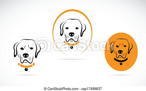 bild, vektor, labrador, hund - csp17499637