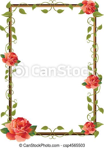 bilderrahmen, rose - csp4565503