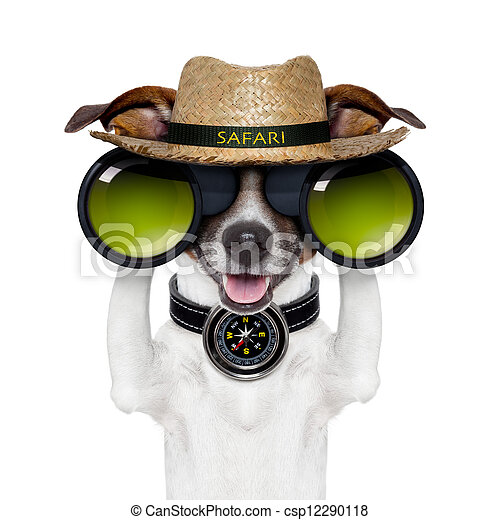 binoculars safari compass dog watching - csp12290118