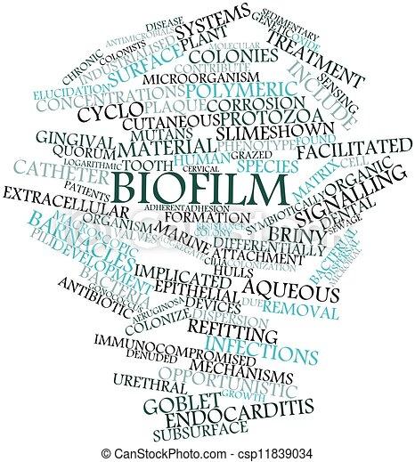 Biofilm - csp11839034