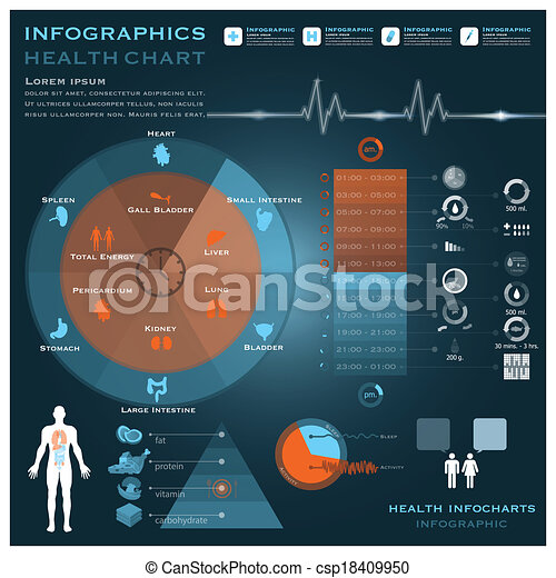 Biological Clock Health And Medical Infographic Infocharts - csp18409950