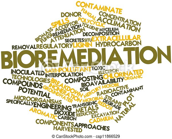 abstract word cloud for bioremediation with related tags clip art trash cans at beach clip art garbage can