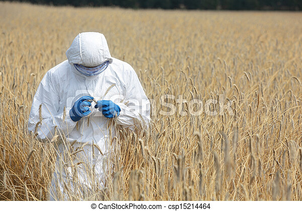 biotechnology engineer on field - csp15214464