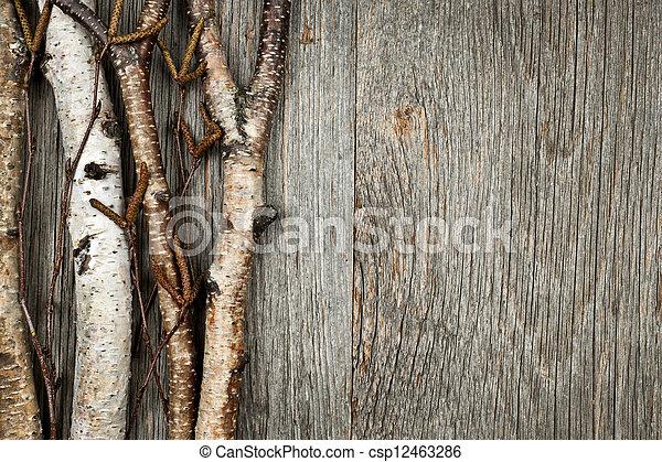 Birch branches background - csp12463286