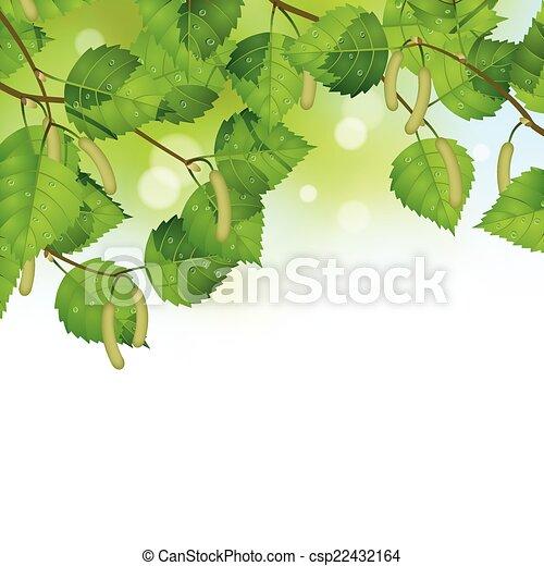 Birch leaves background - csp22432164