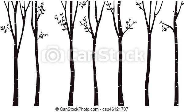 vector illustration of birch tree silhouette background rh canstockphoto com birch tree branches clipart white birch tree clipart