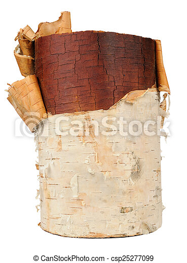 Birch Wood Log Isolated on White Background - csp25277099