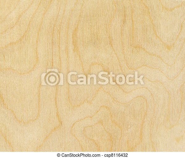 birch wood texture - csp8116432