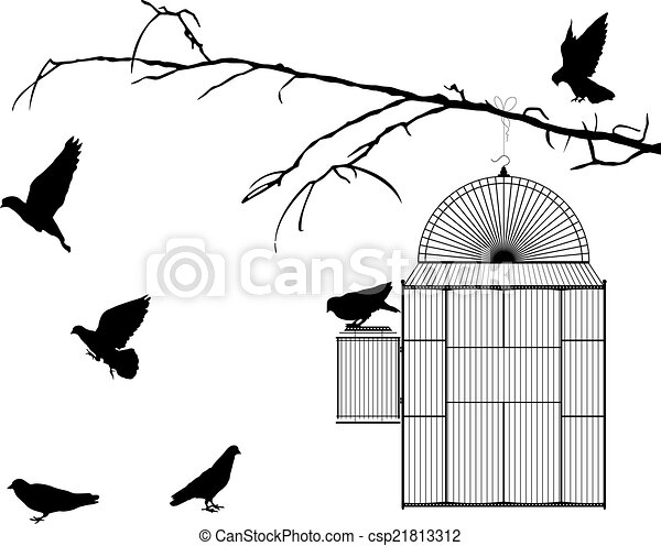 Bird cage - csp21813312