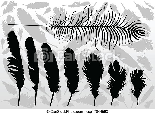 Bird feathers illustration collection background vector - csp17044593