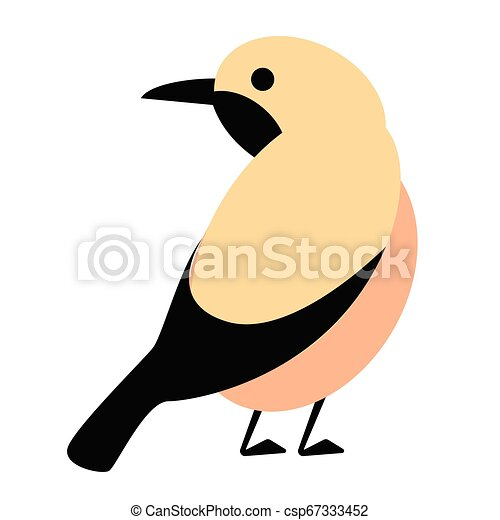 bird flat illustration - csp67333452
