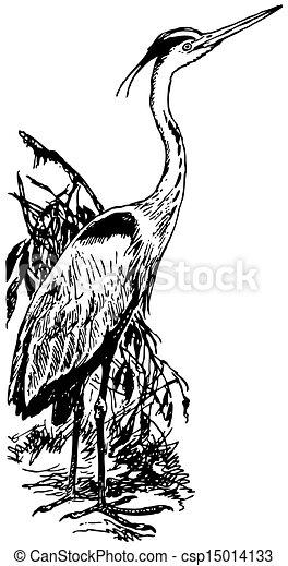 Bird Grey Heron - csp15014133