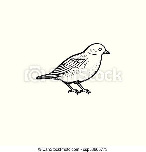 Vector Bird Hand Drawn Sketch Icon