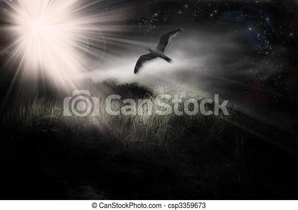 Bird in Flight - csp3359673