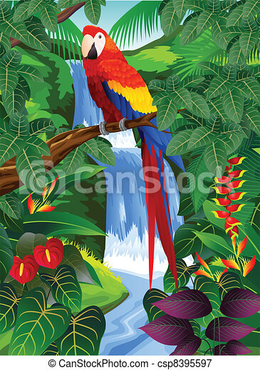 Bird in the tropical forest - csp8395597