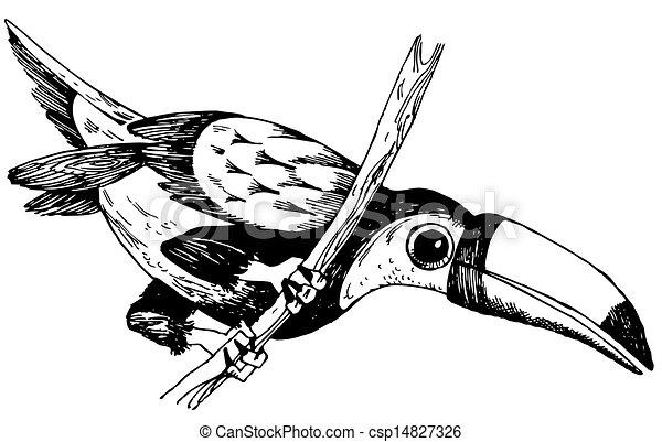 Bird Keel-billed Toucan - csp14827326