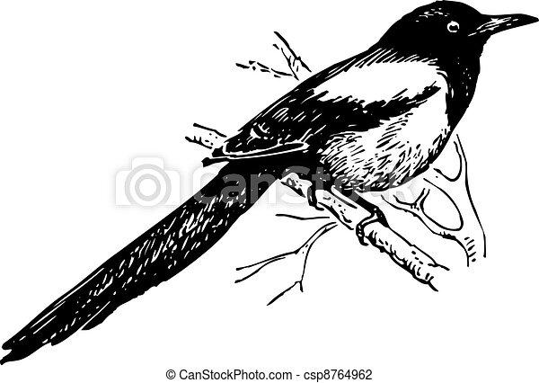 Ausmalbilder Monster High Malvorlagen additionally Bird Magpie 8764962 as well 7354476 additionally Custom Sweaters furthermore Nest Box Birdhouse Plans. on long blue