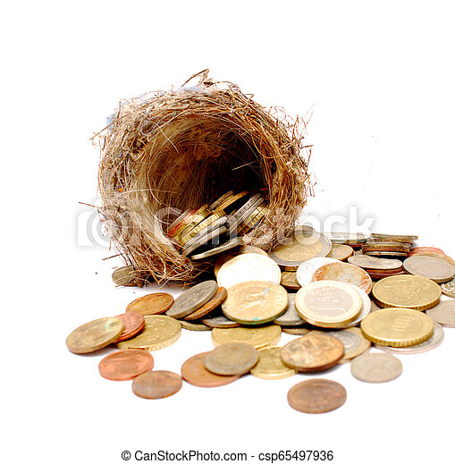 bird nest and old and new coins on white background - csp65497936