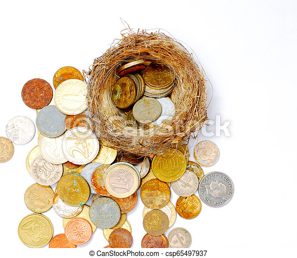 bird nest and old and new coins on white background - csp65497937