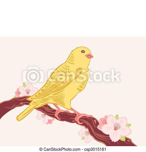 bird on a branch - csp3015161