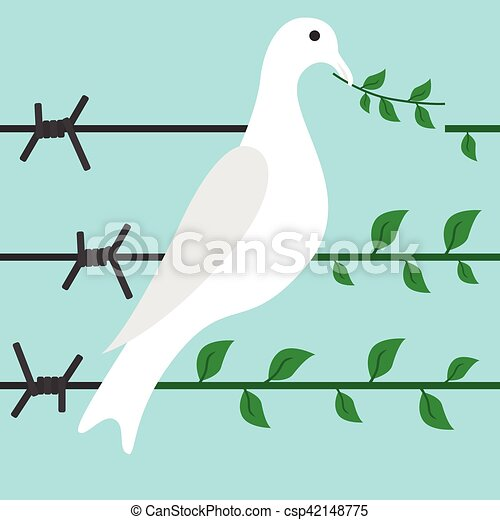 Bird on barbed wire - csp42148775