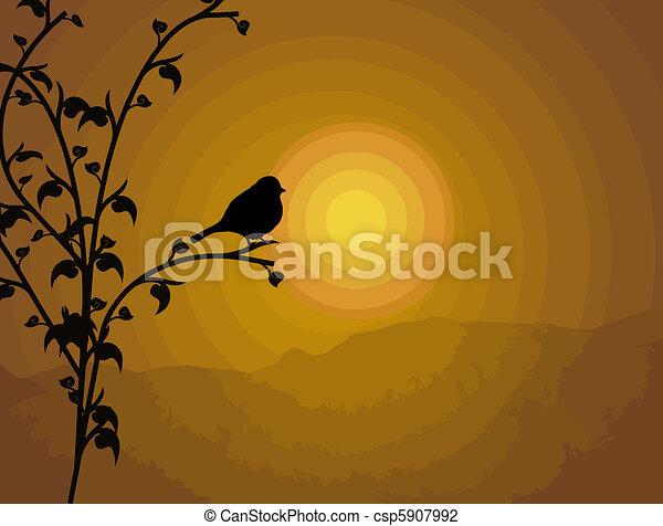 Bird on branch - csp5907992