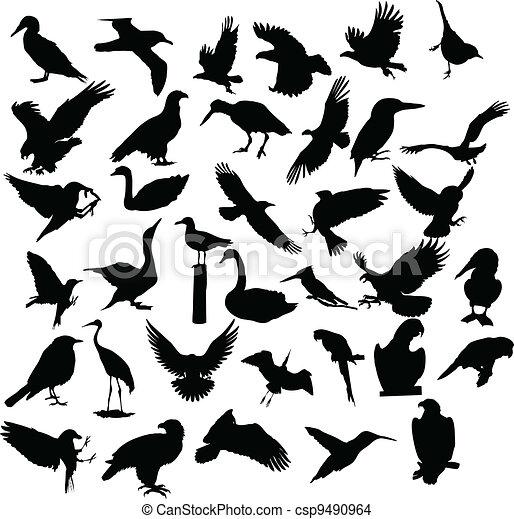bird silhouette - csp9490964