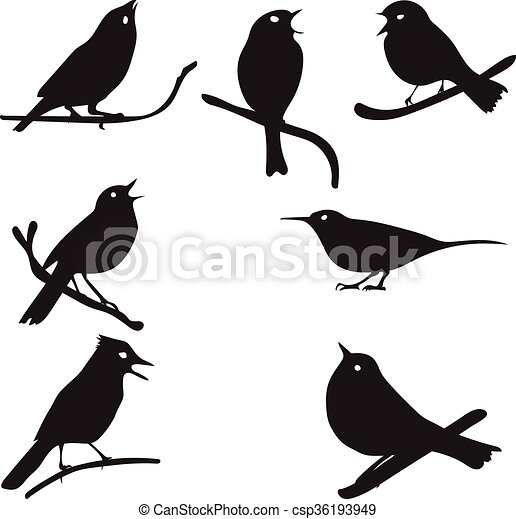 Bird Silhouettes Bird On Branch Vector Collection Isolated