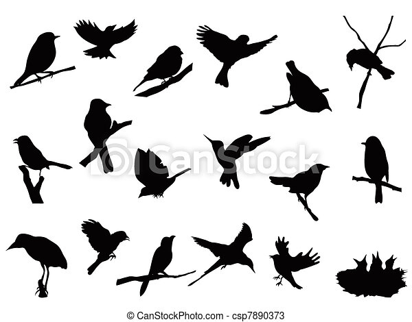 bird silhouettes collection - csp7890373