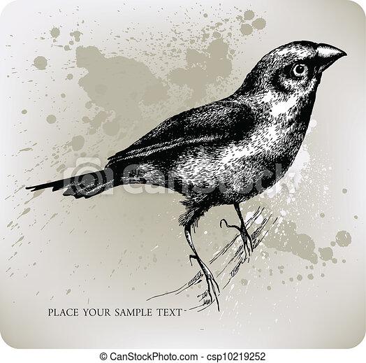 Bird Sitting On A Branch Hand Draw
